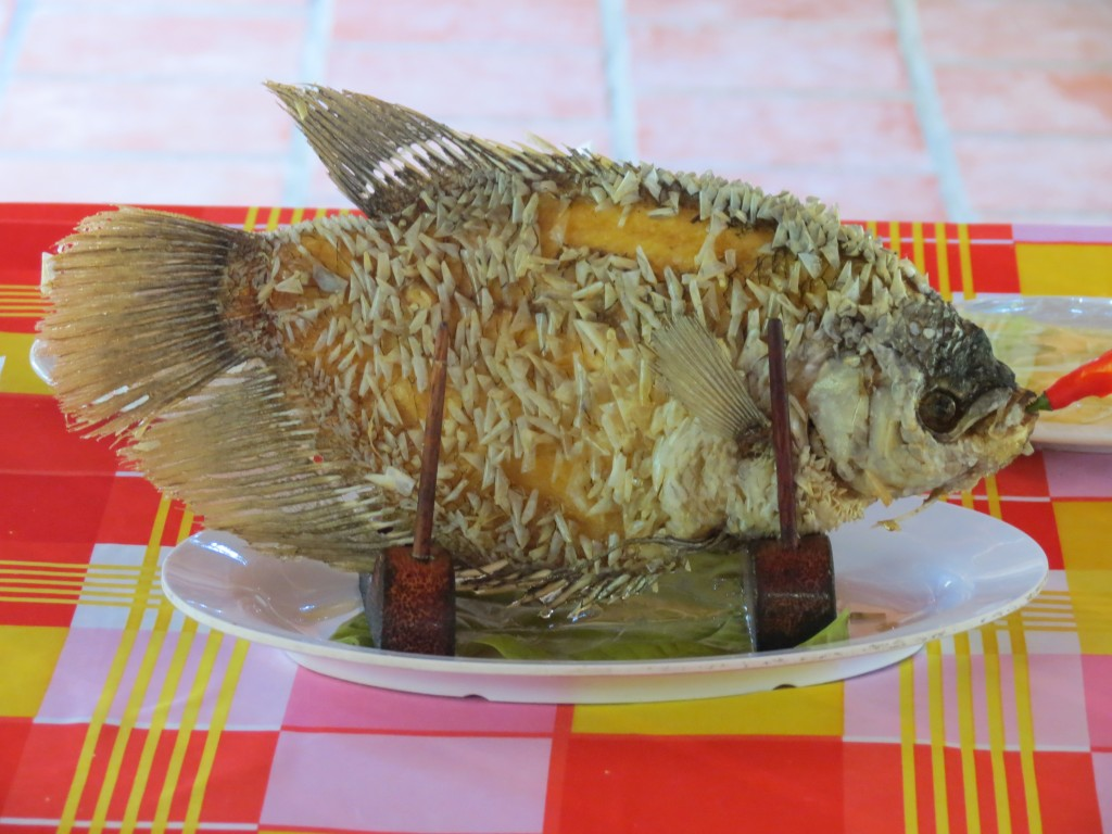 """""""Elephant Ear"""" Fish for Lunch (scales can be eaten)"""